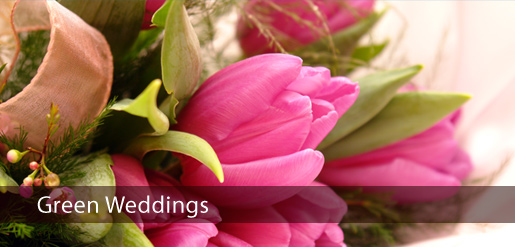 Event planning, Wedding planning and Innovation workshops - Profile